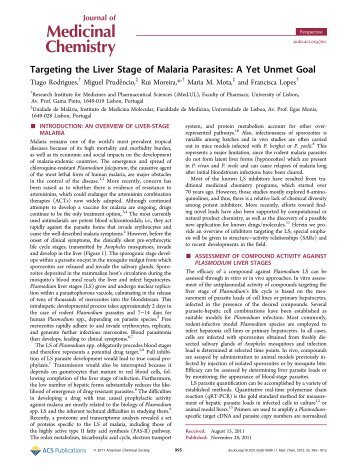 Targeting the Liver Stage of Malaria Parasites - American Chemical ...