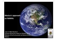 Presentation - United Nations Framework Convention on Climate ...