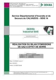DEKRA Industrial SAS - SDIS14