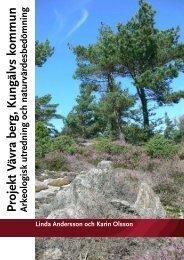 Arkeologisk utredning och naturvärdesbedömning, 2010