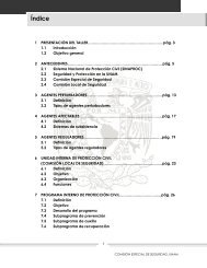 Lineamientos Generales para la elaboración de los Programas