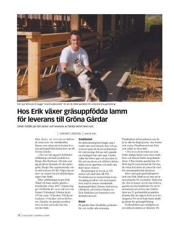 Hos Erik växer gräsuppfödda lamm för leverans till Gröna Gårdar