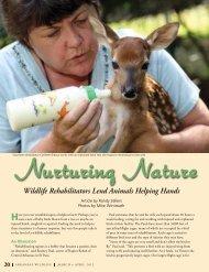 Wildlife Rehabilitators Lend Animals Helping Hands