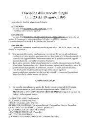 Disciplina della raccolta funghi l.r. n. 23 del 19 agosto 1996