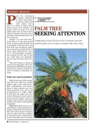 PALM TREE sEEking ATTEnTiOn - Facts For You