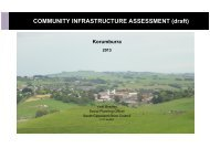 COMMUNITY INFRASTRUCTURE ASSESSMENT (draft) - South ...