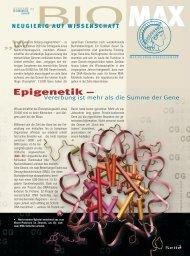 Epigenetik – - Max Wissen