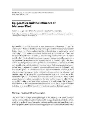 Epigenetics and the Influence of Maternal Diet - Karger