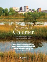 Discovering the Calumet - Chicago Wilderness