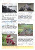 Cylchgrawn83 - Page 3