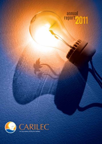 Annual Report 2011 - Carilec