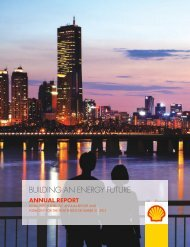 Annual Report & 20-F 2012 (193 p, 269 tables) - Beursgorilla