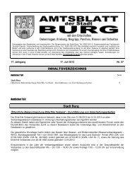 AMTSBLATT 27-2013.pdf - Stadt Burg