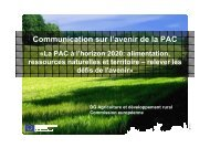 Communication on the future of the CAP_FR