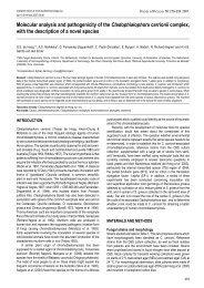 Molecular analysis and pathogenicity of the ... - CBS Home