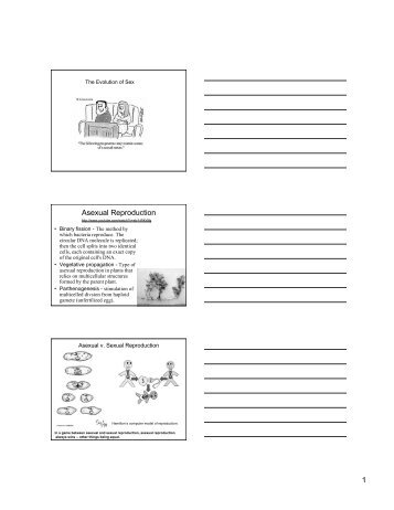 worksheet asexual reproduction. Black Bedroom Furniture Sets. Home Design Ideas