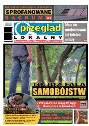 Przegląd Lokalny Nr 24 (1006) 14 czerwca 2012 roku
