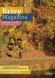 n° 15 - novembre 2008 - Briey