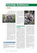 Enneagramm: Ein Wegweiser zum Selbst - Seite 6