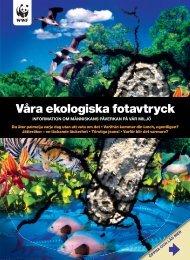 Våra ekologiska fotavtryck - Världsnaturfonden WWF