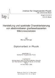 Diplomarbeit Michael Pöllinger (2006)
