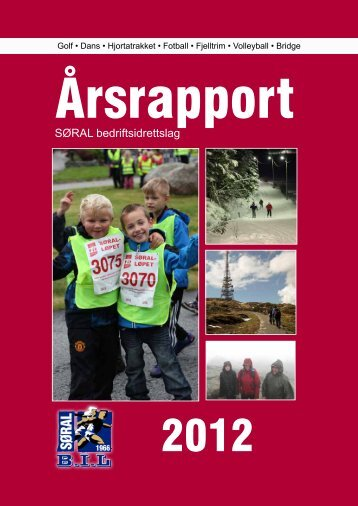 Årsrapport 2012 - søral bil