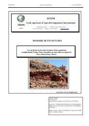 Etude d'une transition en cours dans la région du Souss Massa ...