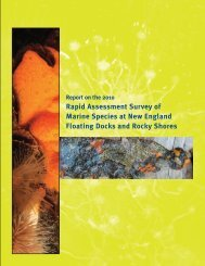 Report on the 2010 Rapid Assessment Survey of Marine ... - Mass.Gov