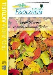 Blättle KW 42 - Friolzheim