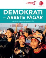 Ladda ner en broschyr om partistödsprojekten (PDF)