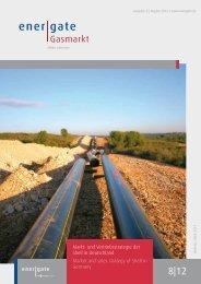 Markt- und Vertriebsstrategie der Shell in Deutschland Market and ...