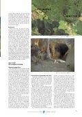 Revista Karaitza 13.pdf - Federación Navarra de Espeleología - Page 7
