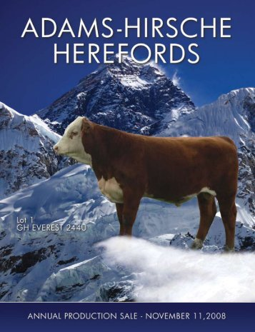 Hereford - Hirsche Herefords & Angus