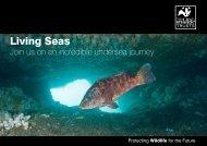 Living Seas Vision (A5 booklet 2010).pdf - Gwent Wildlife Trust