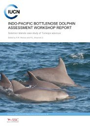 assessment workshop on indo-pacific bottlenose dolphins - IUCN