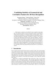 Combining Statistics of Geometrical and Correlative Features for 3D ...
