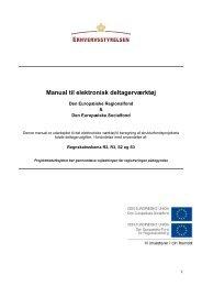 Manual til deltagerfil regnskabsskema 2 og 3 - Erhvervsstyrelsen