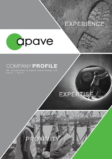 tailor-made services for zero industrial risks safety | audit - Apave