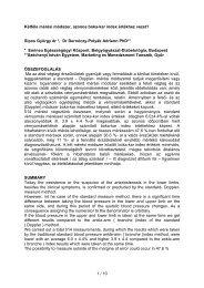 ABI tanulmány - Dr. Sipos György - Premium Orvos