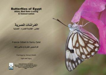 2008 Butterflies