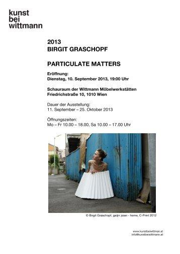 2013 birgit graschopf particulate matters - Kunst bei Wittmann