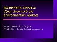 VČP 1.5 - Masaryk University