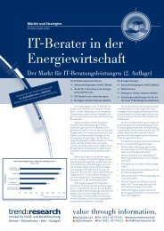 IT-Berater in der Energiewirtschaft - trend:research