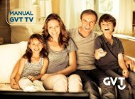 GVT TV