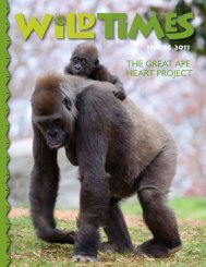 The greaT ape hearT projecT