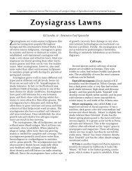 Zoysiagrass Lawns - Southwest Georgia Master Gardeners