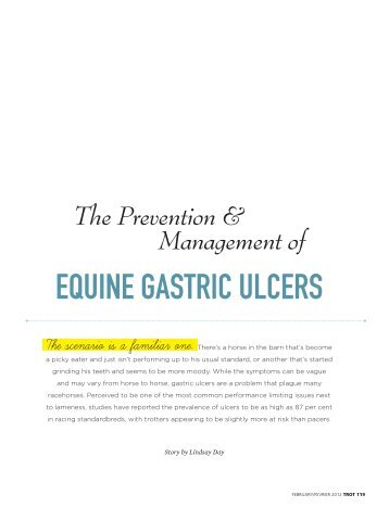 The Prevention & Management of Equine Gastric Ulcers