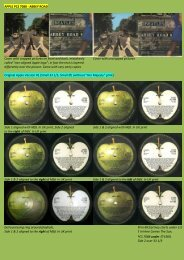 APPLE PCS 7088 - Abbey Road - applerecords.nl