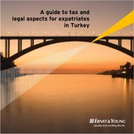 A guide to tax and legal aspects for expatriates in Turkey