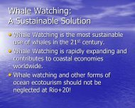 The Global Development of Whale Watching - Stakeholder Forum
